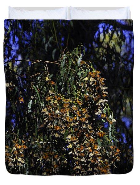 Wintering Monarchs Duvet Cover