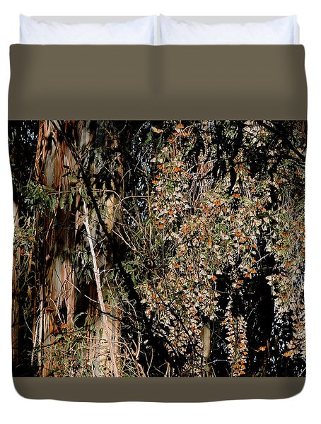 Wintering Monarchs Duvet Cover
