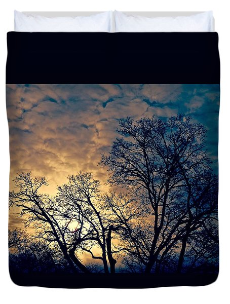 Winter's Afternoon Duvet Cover