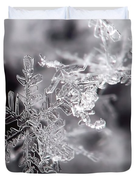 Winter's Beauty Duvet Cover