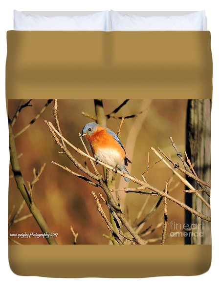 Winter's Bluebird  Duvet Cover