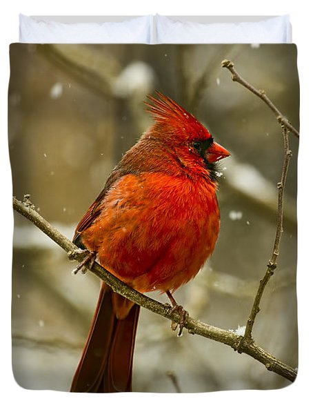 Wintry Cardinal Duvet Cover