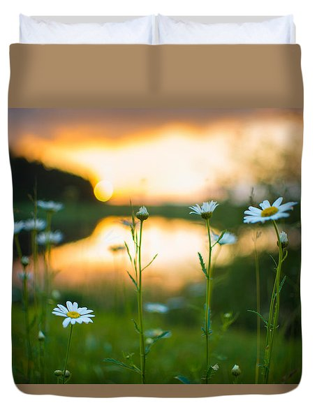Wisconsin Daisies At Sunset Duvet Cover