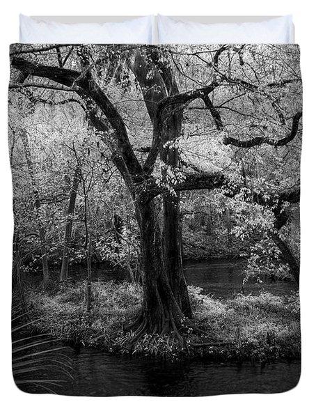Wisdom Of A Tree Duvet Cover