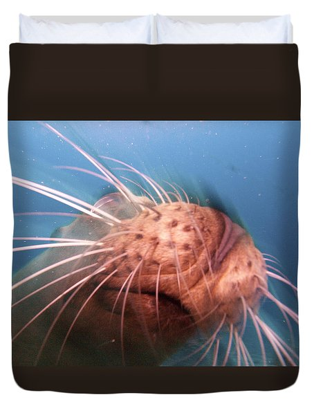 Wiskers And A Nose Of Sea Lion Duvet Cover