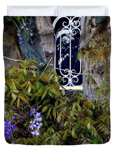 Wisteria Window Duvet Cover by Lainie Wrightson