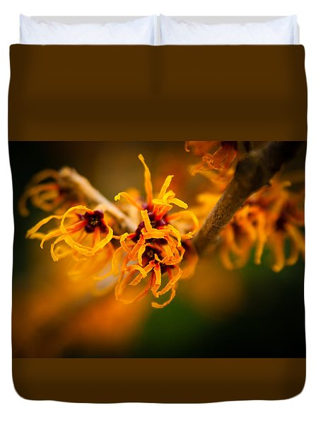 Duvet Cover featuring the photograph Witch Hazel by Erin Kohlenberg