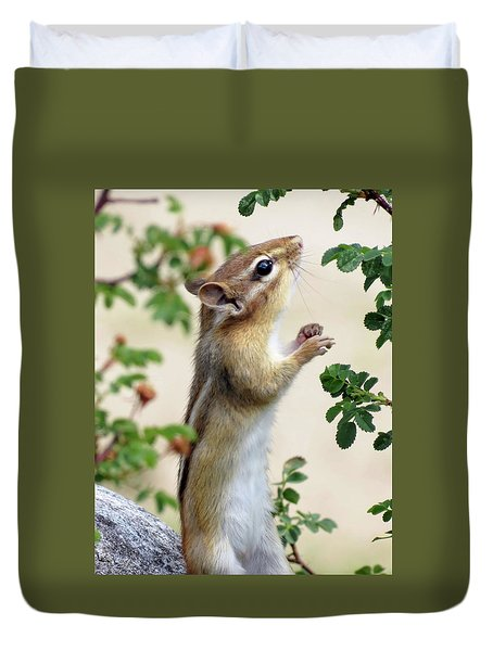 Within Reach - Chipmunk Duvet Cover by MTBobbins Photography