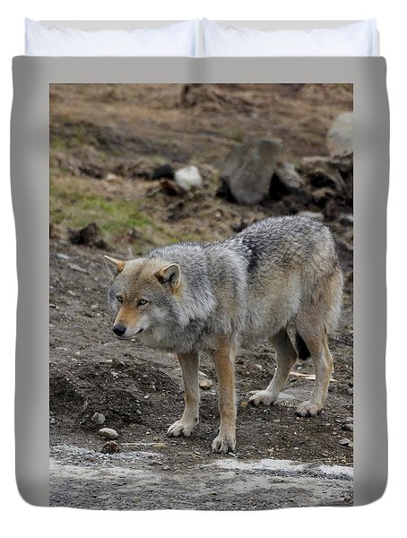 Wolf 1 Norway Duvet Cover