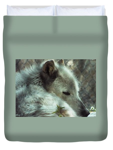 Wolf At Rest Duvet Cover
