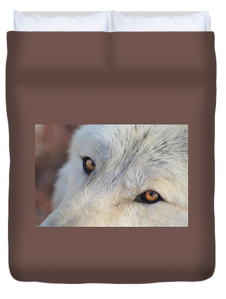 Duvet Cover featuring the photograph Wolf Eyes by Carolyn Dalessandro