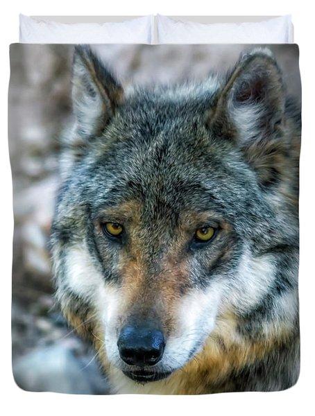 Wolf Gaze Duvet Cover