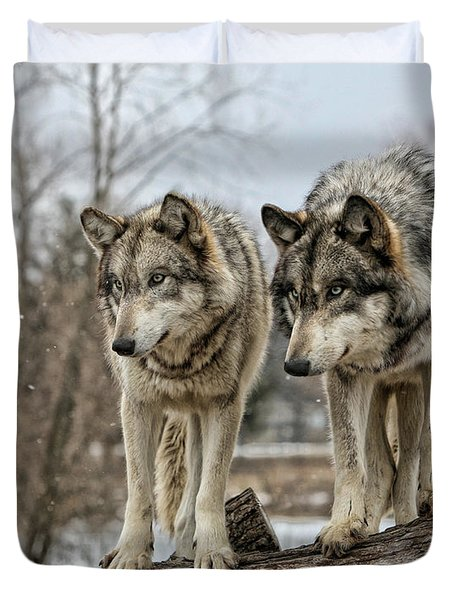 Duvet Cover featuring the photograph Wolf Pair by Shari Jardina