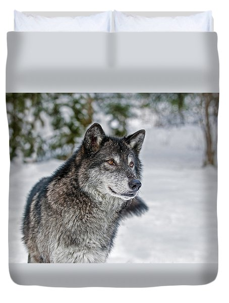 Wolf Portrait Duvet Cover