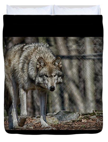 Wolf Stalking Duvet Cover