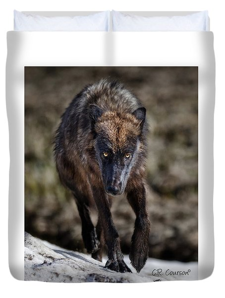 Wolf Tracking Me? Duvet Cover