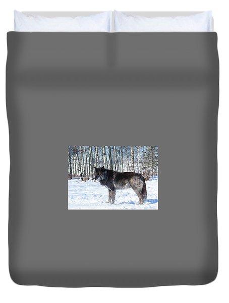 Wolfdog Duvet Cover