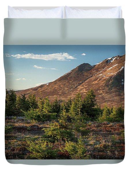 Wolverine Mt Near Sunset Duvet Cover