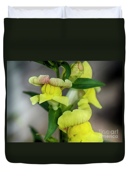Wonderful Nature - Yellow Antirrhinum Duvet Cover