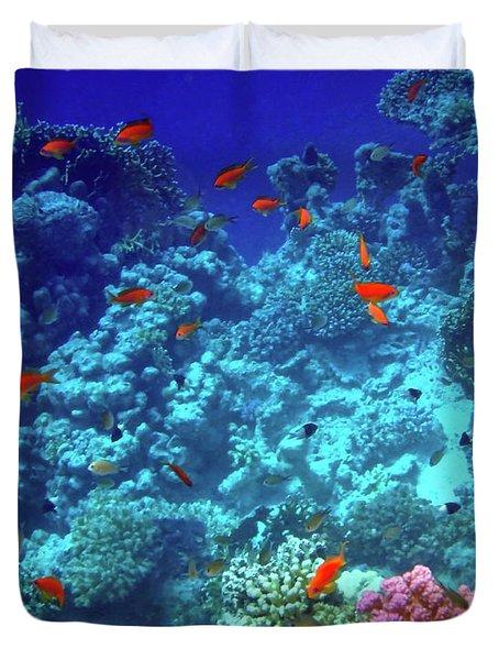 Wonderful Red Sea 6 Duvet Cover