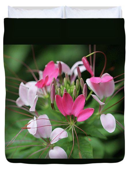 Duvet Cover featuring the photograph Wonders Of Cleome by Deborah  Crew-Johnson
