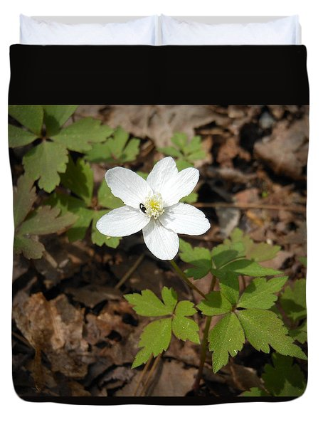 Duvet Cover featuring the photograph Wood Anemone by Linda Geiger