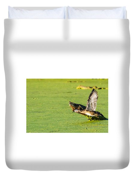 Wood Duck Hen Takes Flight Duvet Cover by Edward Peterson