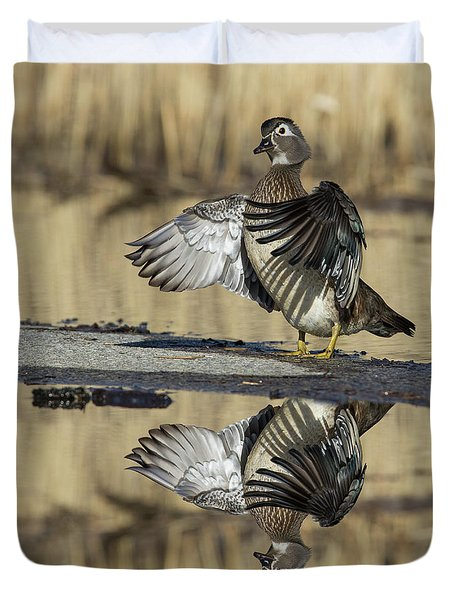 Duvet Cover featuring the photograph Wood Duck Reflection by Mircea Costina Photography