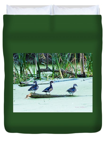 Duvet Cover featuring the photograph Wood Ducks All Grown Up by Edward Peterson