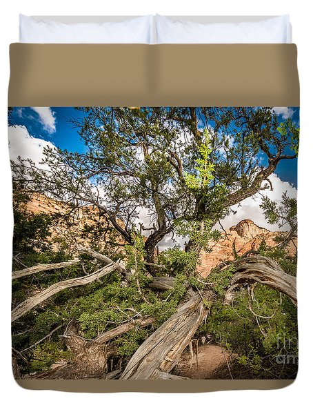 Wood Frame At Zion Duvet Cover