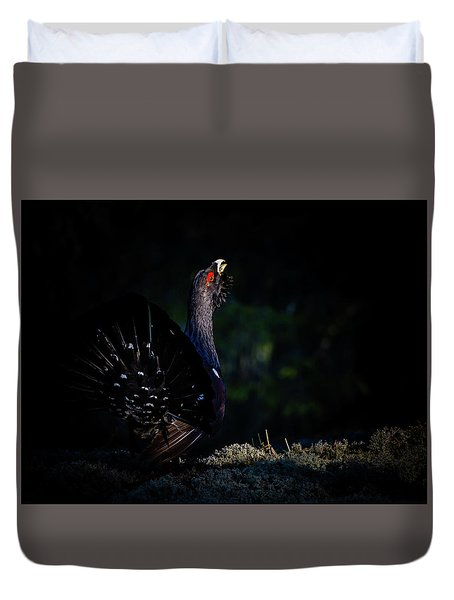 Wood Grouse's Sunbeam Duvet Cover by Torbjorn Swenelius