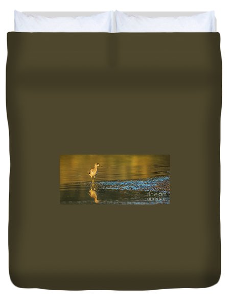 Wood Sandpiper At Sunset Duvet Cover by Jivko Nakev