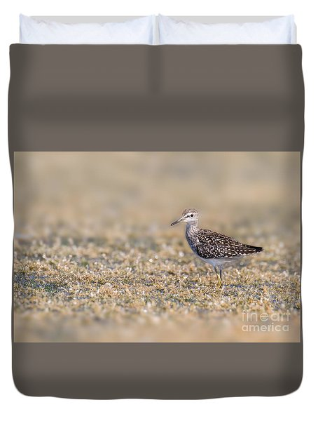 Duvet Cover featuring the photograph Wood Sandpiper by Jivko Nakev