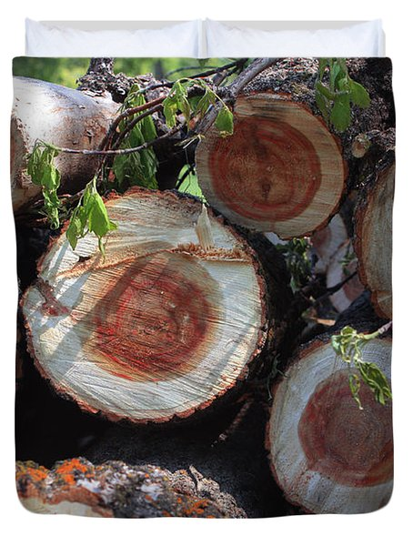 Wood Stock Duvet Cover