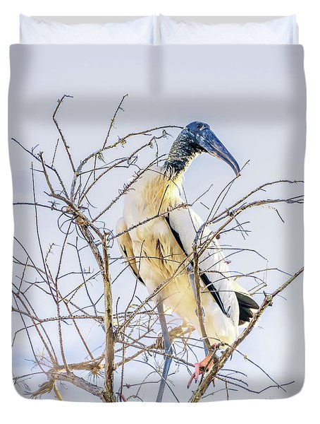 Wood Stork Sitting In A Tree Duvet Cover