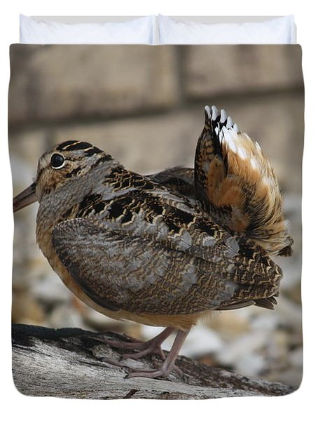 Duvet Cover featuring the photograph Woodcock by Donna  Smith