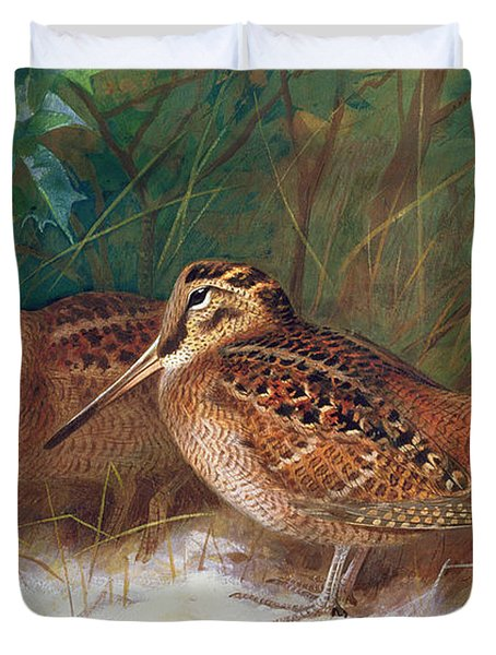 Woodcock In The Undergrowth Duvet Cover by Archibald Thorburn