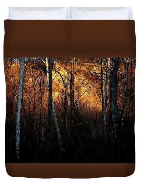 Duvet Cover featuring the photograph Woodland Illuminated by Bruce Patrick Smith