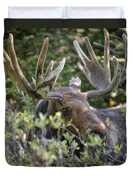 Woodland Moose Duvet Cover