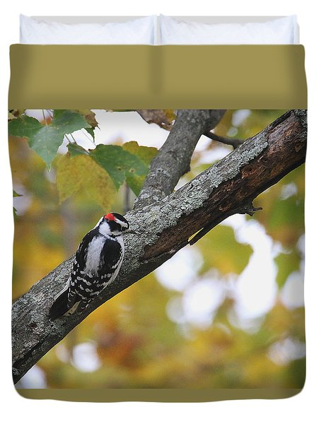 Woodpecker And Autumn Duvet Cover