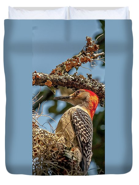 Woodpecker Closeup Duvet Cover