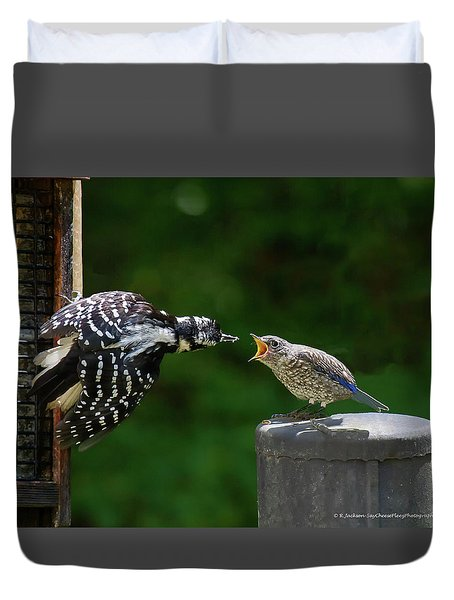 Woodpecker Feeding Bluebird Duvet Cover