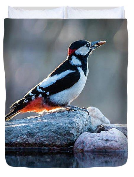 Woodpecker In Backlight Duvet Cover by Torbjorn Swenelius
