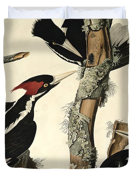 Woodpecker Duvet Cover by John James Audubon