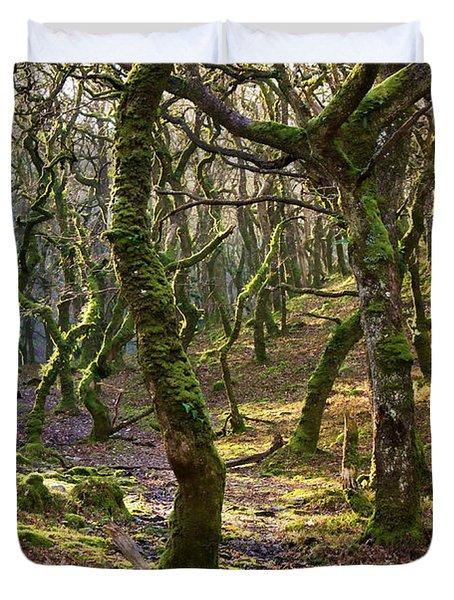 Woods Near Badgeworthy Water Exmoor Duvet Cover