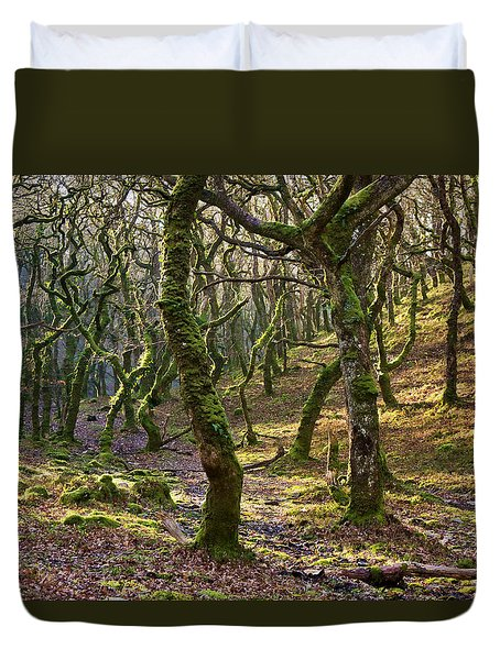 Woods Near Badgeworthy Water Exmoor Duvet Cover