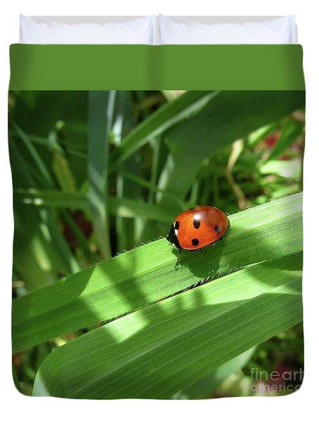 World Of Ladybug 1 Duvet Cover by Jean Bernard Roussilhe