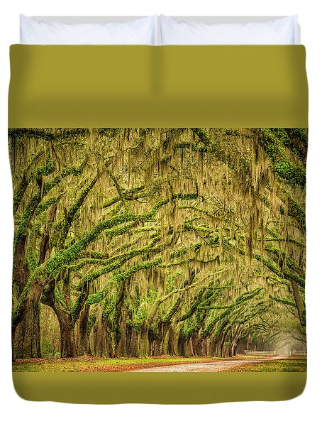Wormsloe Drive Duvet Cover by Phyllis Peterson