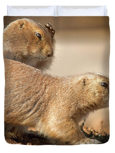 Duvet Cover featuring the photograph Worried Prairie Dog by Robert Frederick