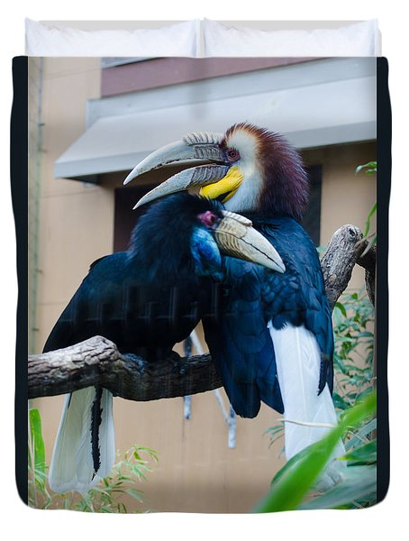 Wreathed Hornbills Duvet Cover by Donna Brown